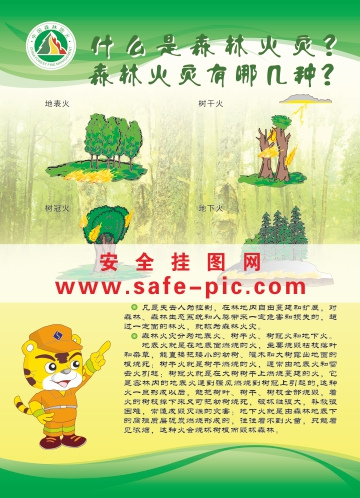 预防森林火灾挂图 森林火灾预防 森林预防火灾海报 an2476